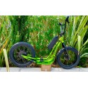 Globe3T - Fat Scoot FS 20
